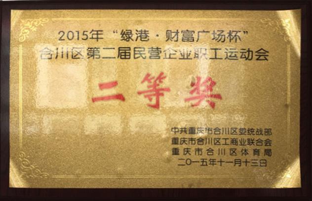 2015年合川区第二届民营企业职工运动会